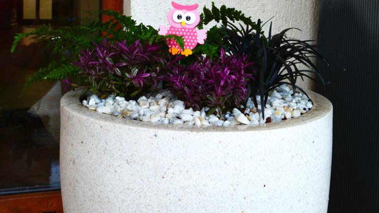 Ghivece pentru terasă